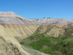 The colors show evidence that some areas of the Badlands were rain forests.